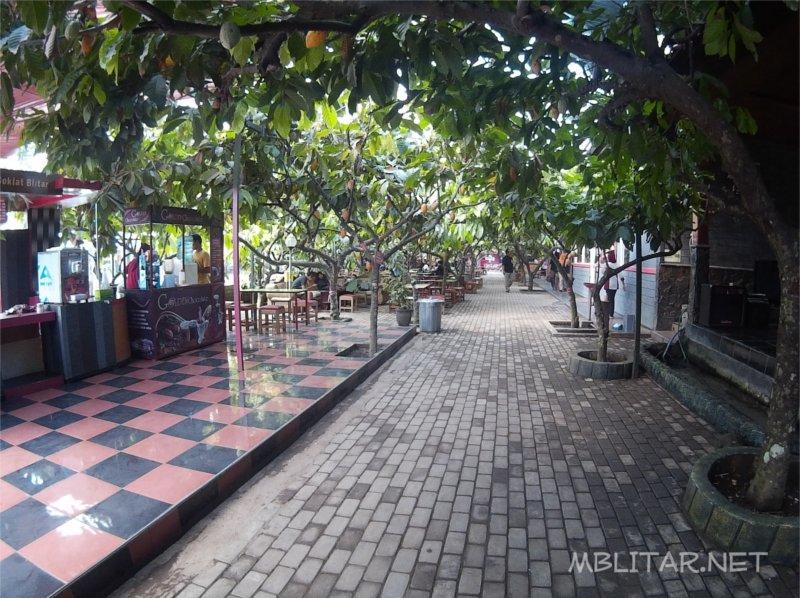 Lokasi Kebun Coklat Balongbendo